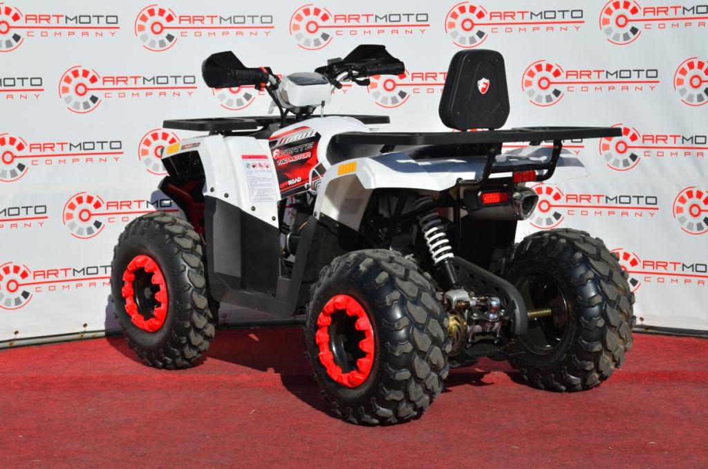 КВАДРОЦИКЛ FORTE BRAVES 200  Артмото - купить квадроцикл в украине и харькове, мотоцикл, снегоход, скутер, мопед, электромобиль