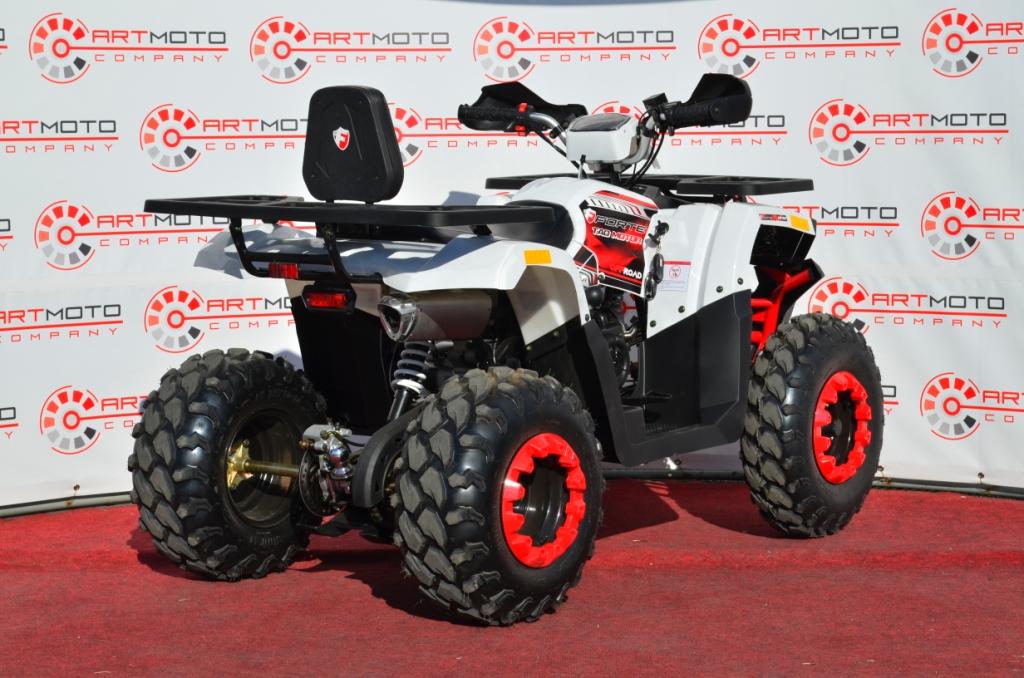 КВАДРОЦИКЛ FORTE BRAVES 200 ― Артмото - купить квадроцикл в украине и харькове, мотоцикл, снегоход, скутер, мопед, электромобиль