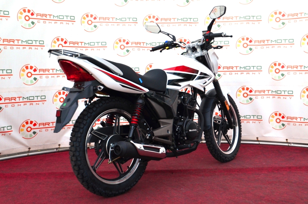МОТОЦИКЛ MUSSTANG REGION MT200  Артмото - купить квадроцикл в украине и харькове, мотоцикл, снегоход, скутер, мопед, электромобиль