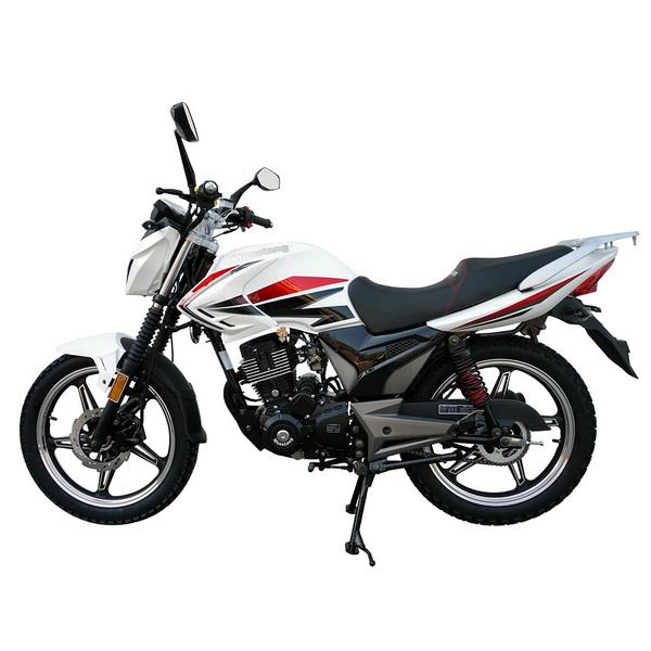 МОТОЦИКЛ MUSSTANG REGION MT200 white ― Артмото - купить квадроцикл в украине и харькове, мотоцикл, снегоход, скутер, мопед, электромобиль